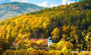 Panorama Zamku Suskiego z góry Mioduszyna